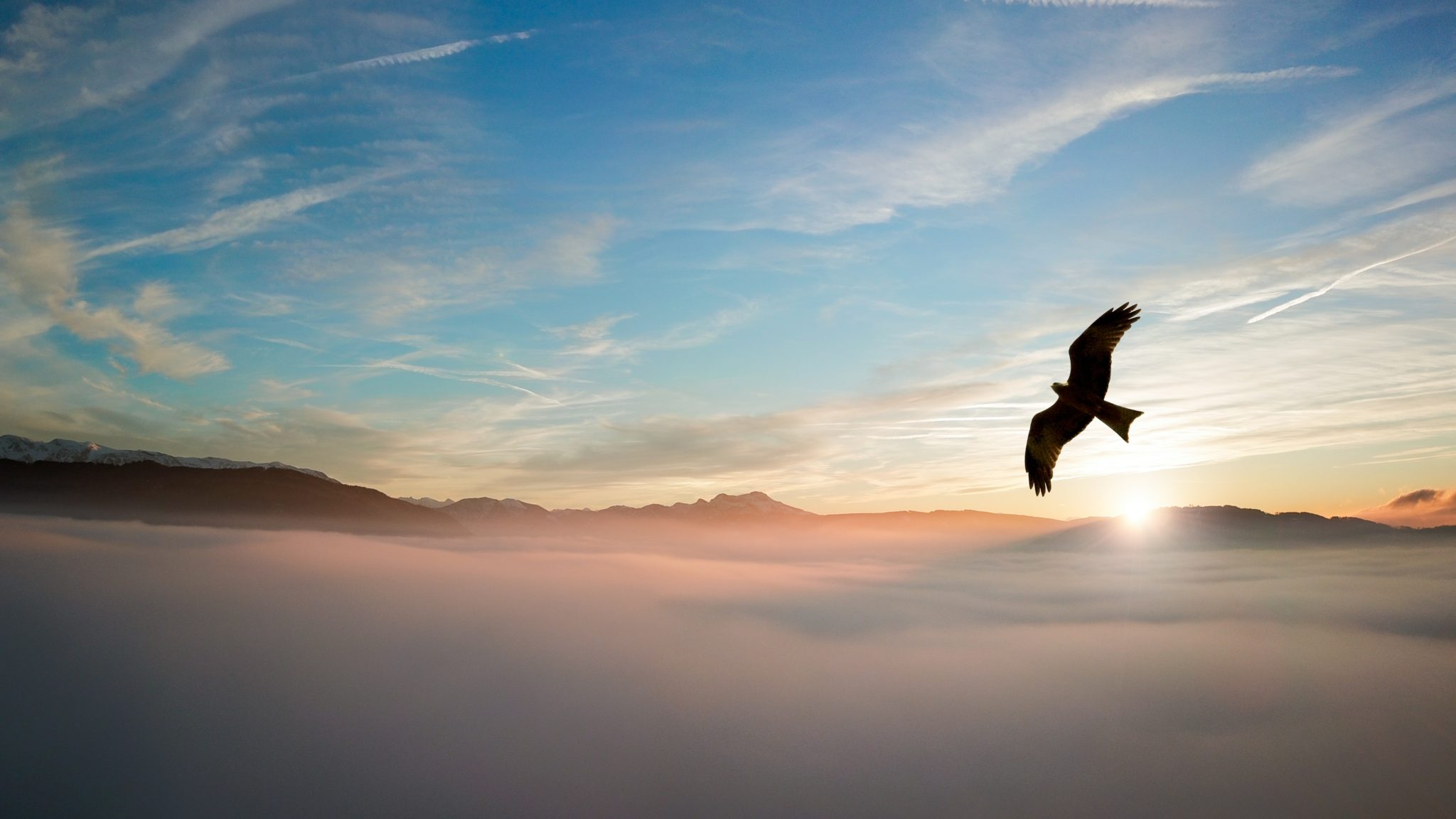 Set to soar - eagle flying over mountains through the clouds with the sun setting in the background